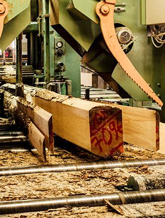 Sägewerk für millimetergenauen zuschnitt bei Holz Gar in Aumühle südlich von München.